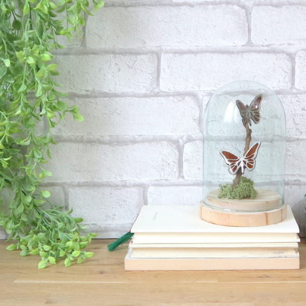 Papillons stylisés en bois sous cloche